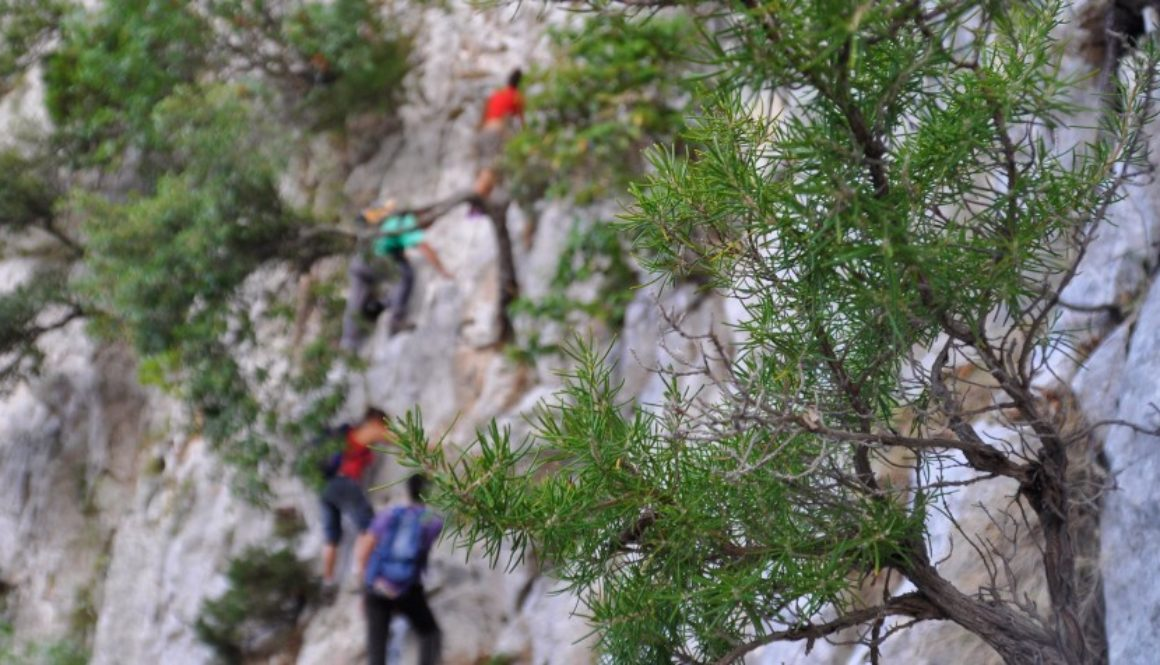 Biriala arrampicare