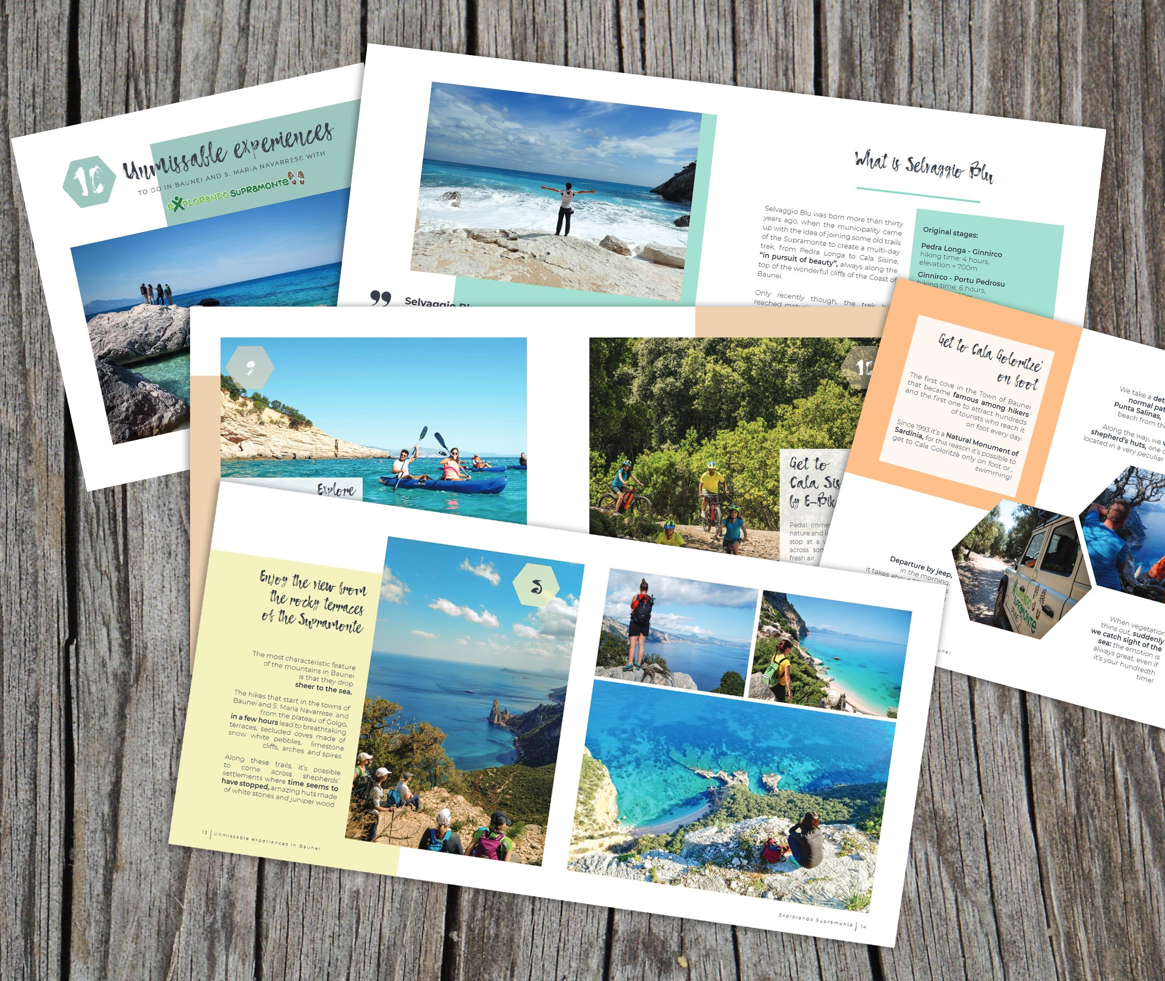 download our guidebook for free!